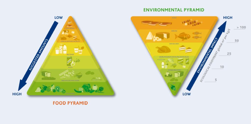 Pirámides alimentaria y medioambiental