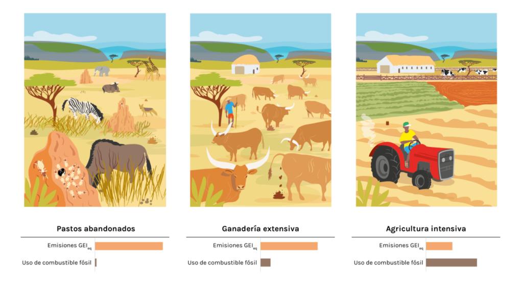Ganadería extensiva y agricultura